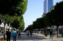 avenue_hbib_b-640x405