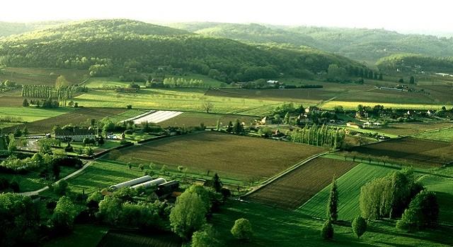 Projet-agricole-leconomiste-maghrebin