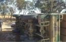 millitaire  شاحنة عسكرية comion armé جيش