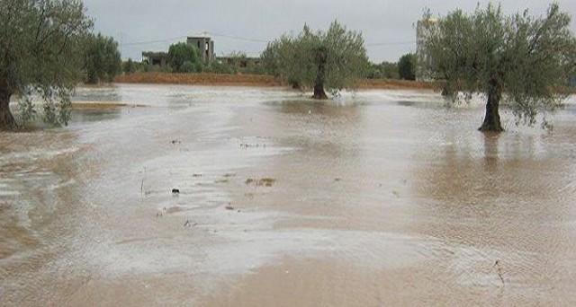siliana innondation فيضانات