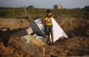 palestine غزة فلسطين