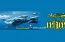 incroyables-cetaces