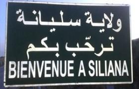 siliana_tunisie_investissement
