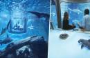 1airbnb-aquarium-paris-