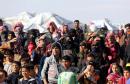 refugies syriens jordan
