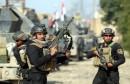 أفاد ت مصادر اخبارية أن القوات العراقية حررت أغلب الأحياء الشمالية للفلوجة ومنها الشرطة والجغيفي ولم يبق سوى حي الجولان بيد تنظيم داعش.