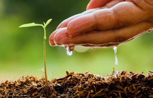 Agriculture فلاحة زراعة ماء  arrsosage eau