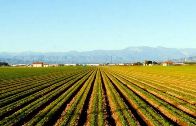 agricul