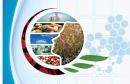 الوكالة الوطنية للمراقبة الصحية و البيئية للمنتجات