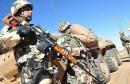 الجيش الجزائري algerie