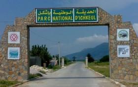 والي بنزرت يصدر قرار إعادة فتح الحديقة الوطنية  » اشكل » يوم غرة افريل القادم__ichkel