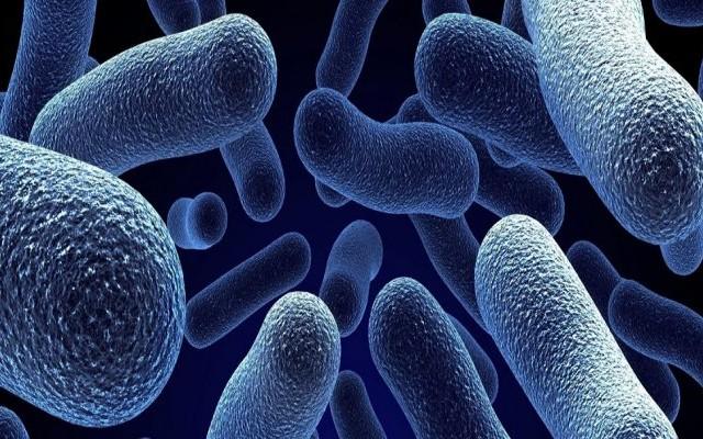 62 حالة مؤكدة لوباء الكوليرا من بين 173 حالة استقبلتها المستشفيات