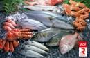 سمك صيد بحري poisson