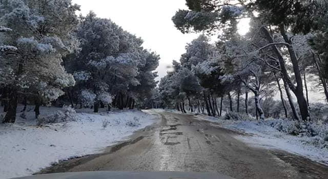 الكاف : تساقط كميات من الثلوج واللجنة الجهوية لمجابهة الكوارث في حالة انعقاد مستمرّ