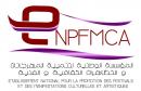 المؤسسة الوطنية لتنمية المهرجانات والتظاهرات الثقافية والفنية
