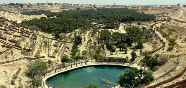 مدينة_نفطة_التونسية