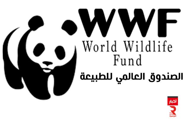 الصندوق العالمي للطبيعة