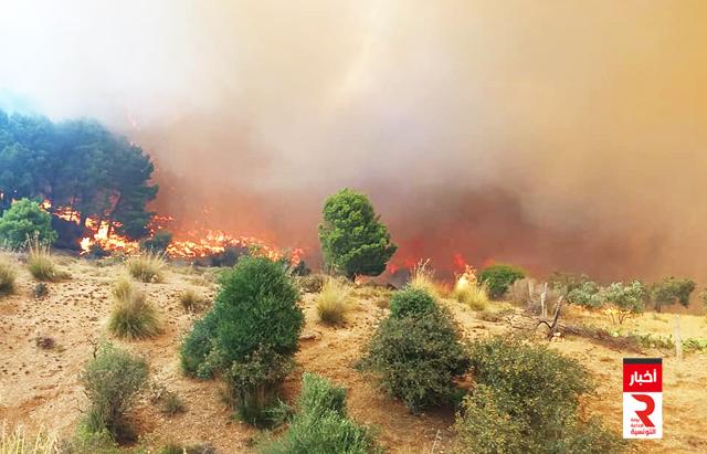 حريق جبل feu flamme