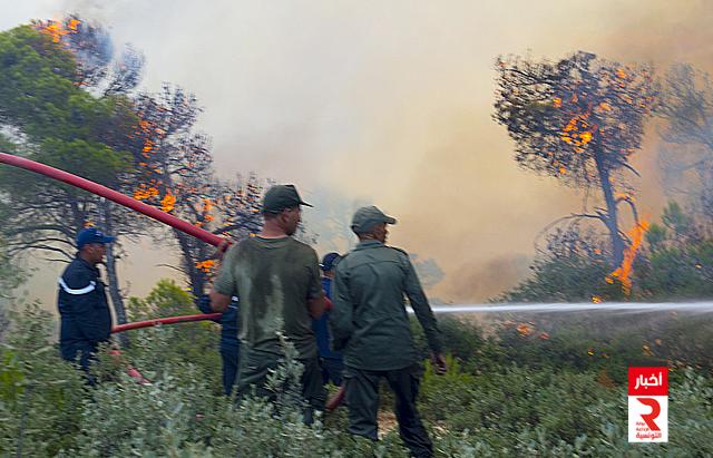 kef feu حريق الكاف